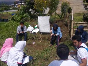 Belajar tentang kualitas tanah